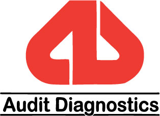 Audit Diagnostics